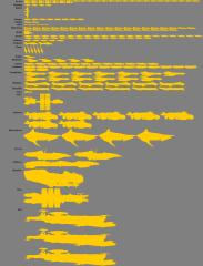 47th Fleet as of 10/27/15