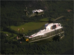 VH-3d and VH-60N